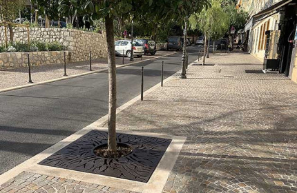 Beautiful roots tree grilles in Beaulieu-sur-mer (France)